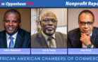 African American Chambers of Commerce | Nonprofit Report