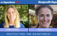 Protecting The Rainforest | Nonprofit Report