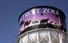 Detroit Zoo Named Best-Managed Nonprofit in SE Michigan