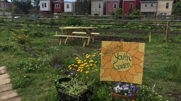 """Youth Garden at Common Good City Farm"" Photo courtesy of Common Good City Farm"
